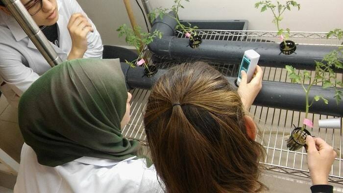 Konya Gıda ve Tarım Üniversitesi 1. Sınıf Öğrencileri Üniversitenin Ar-Ge Projelerinde Çalışmaya Başladı