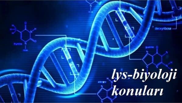 2017 Lys 2 Biyoloji Konuları Konu Dağılımı