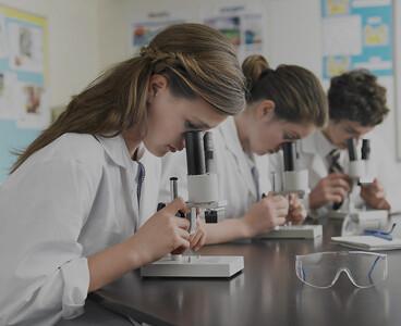 İstanbul'a yeni 4 tane üniversite kuruluyor
