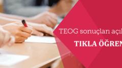 2017 TEOG sonuçları açıklandı – TIKLAYIN