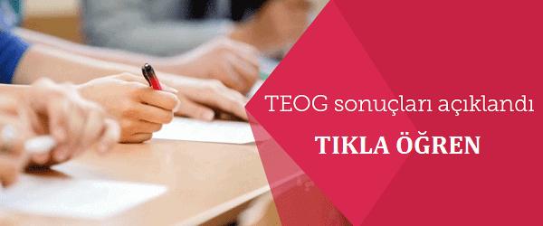 2016 TEOG Yerleştirme Sonuçları Açıklandı